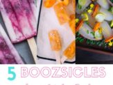 Boozsicles – Refreshing Popsicles for Adults