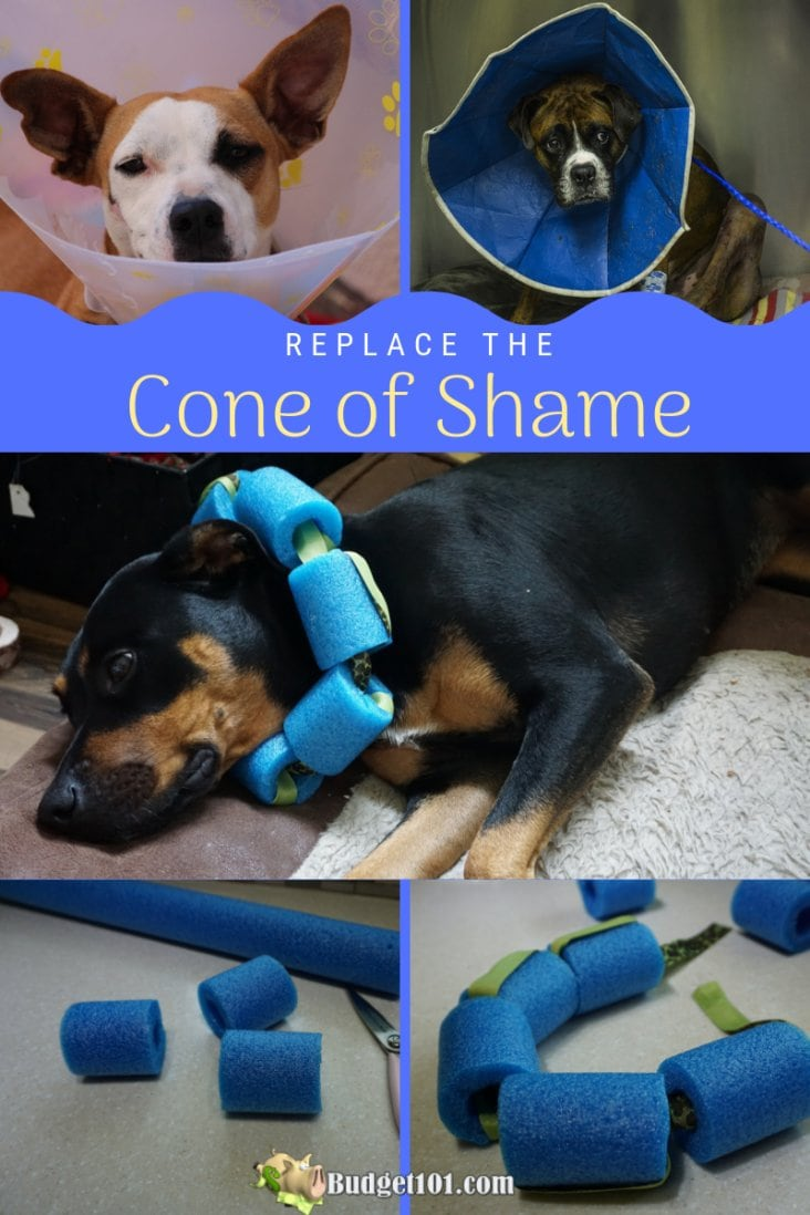 Cone of Shame Pool Noodle Replacement