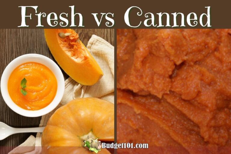 fresh vs canned pumpkin budget101