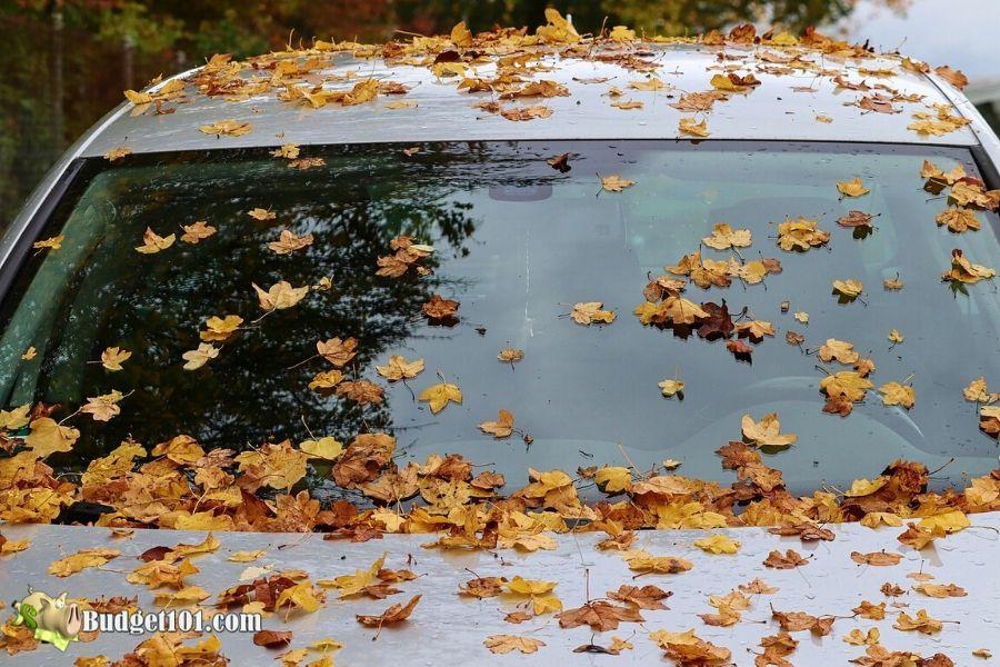 b101-windshield-washer-fluid