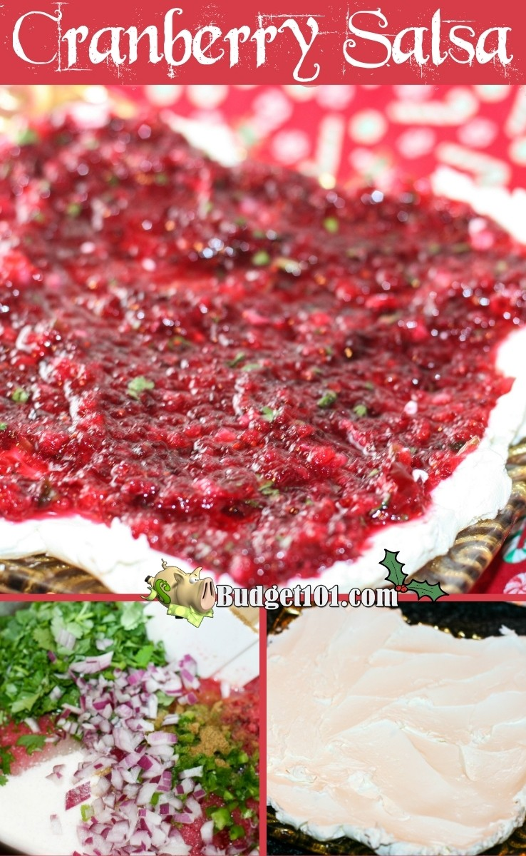 This gorgeous festive cranberry salsa incorporates the savory southwestern flavors of jalapeno, lime, cilantro, and cumin with the sweet-tart taste of fresh cranberries for a simple appetizer you'll adorore. Great with crackers, apple slices, and more... #Cranberries #Cranberrysalsa #MYO #Appetizer #Christmas #Holidays #DirtCheap #Budget101