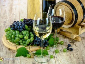 10+ Revealing Facts About Aging Wine in Oak Barrels