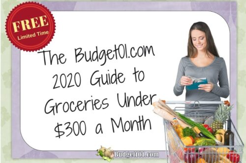 The 2020 guide to Groceries under $300 a Month