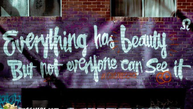 b101 miami urban graffiti