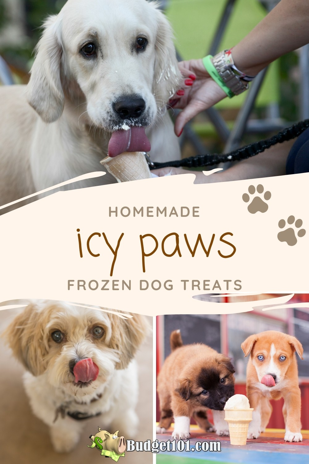 Create delicious homemade Icy Paw treats for your beloved dog! #Budget101 #DirtCheap #MYO #DogsLife #Summerfun