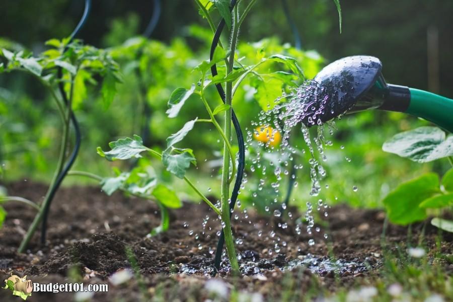 b101-organic-gardening-pesticides1