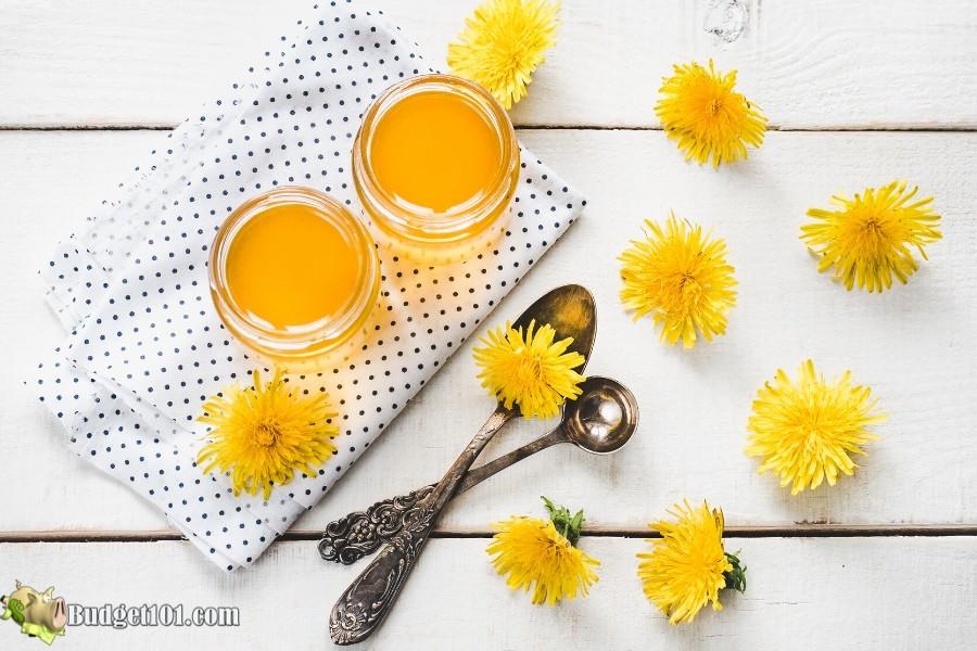 B101-dandelion-jelly