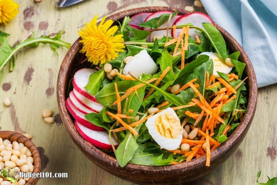 B101-dandelion-salad