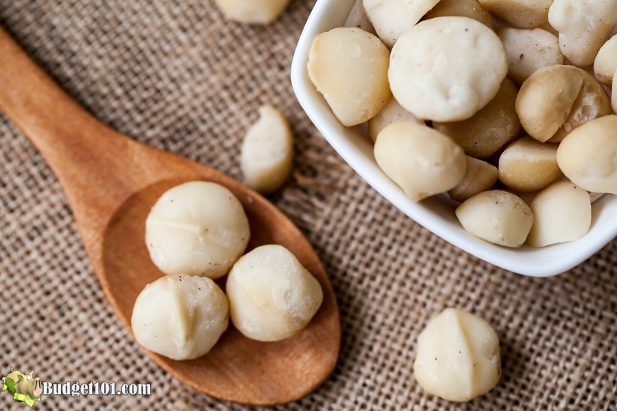 b101-macadamia-nuts