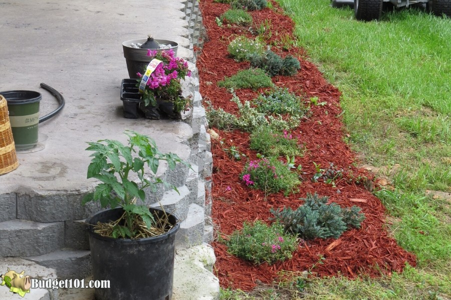 Stamped Concrete Patio Step 32 - By Budget101.com