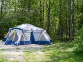 Snake Away! Cheap Ways to Deter Pests while Camping