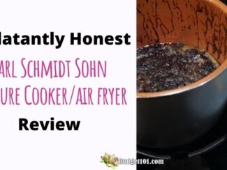 b101 air fryer honest review