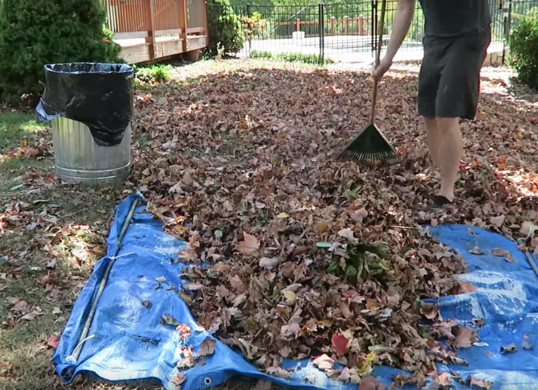 Fall Tricks- Rake leaves onto a tarp