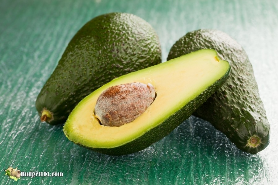 avocado toxic to dogs