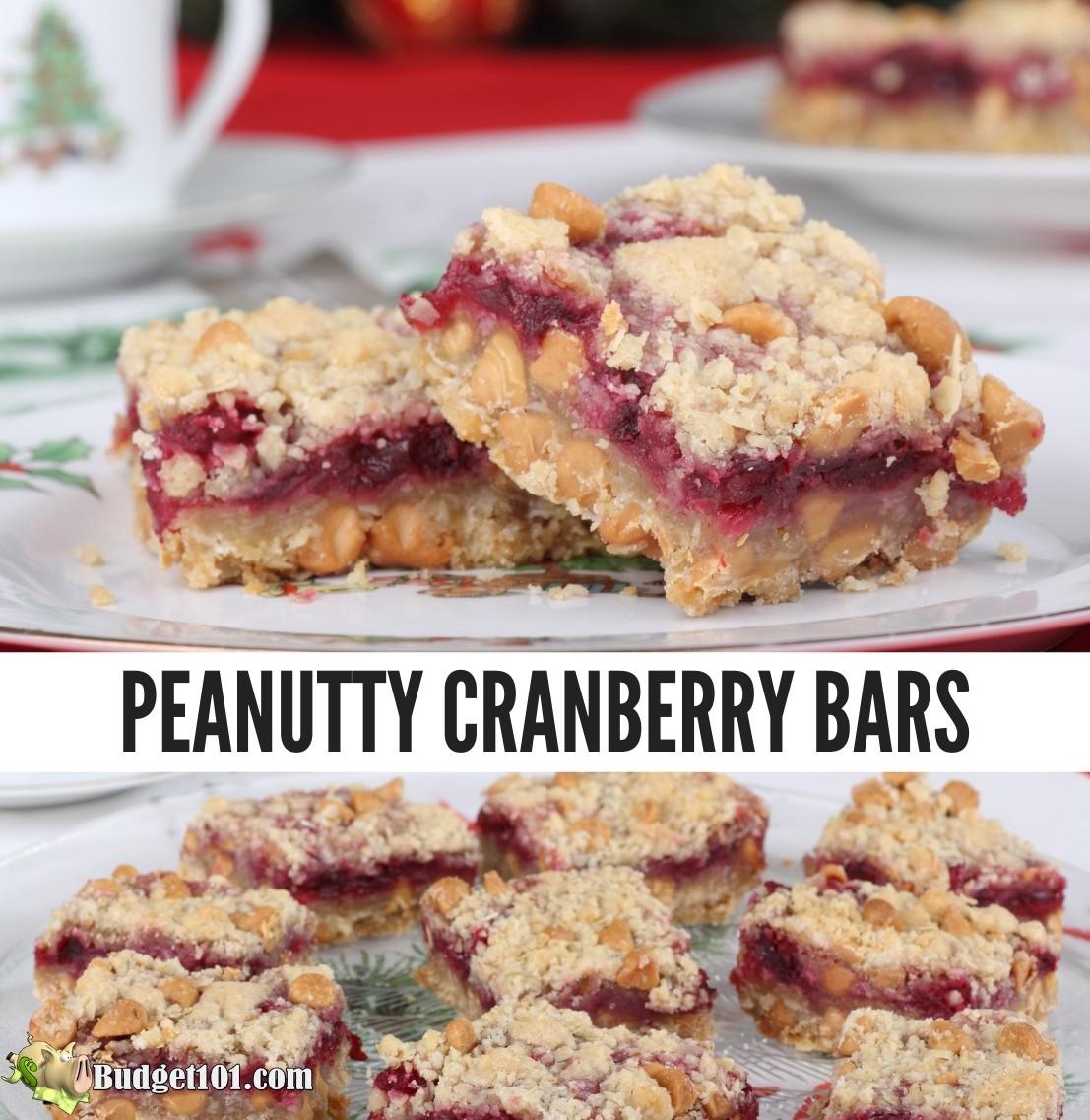 b101 peanutty cranberry bars