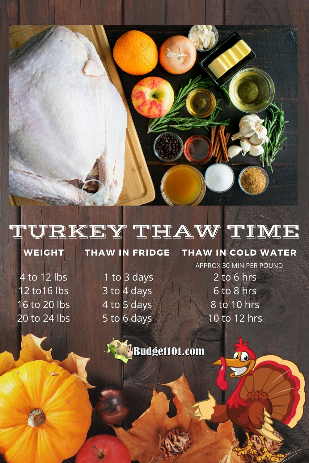 Forgot to defrost the turkey? Here's How to safely thaw a frozen turkey fast, how long it will take, what you'll need, & what NOT to do! #Thanksgiving #TurkeyTime #Thaw #Defrost #OAMC #CookingTips #CookingHacks #Budget101 #FoodSafety