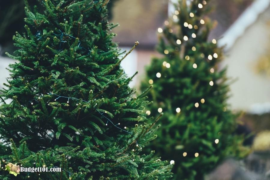 christmas tree lights b101