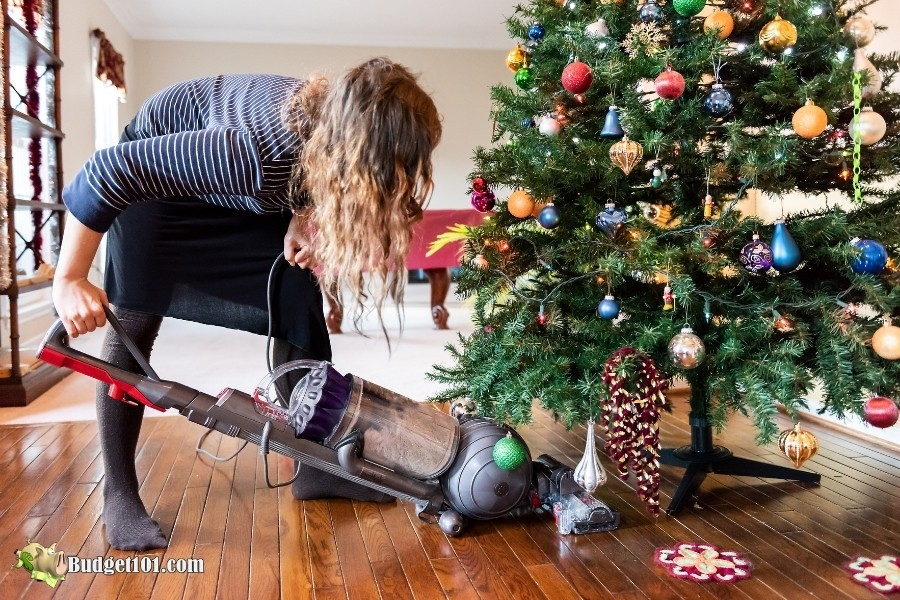 prevent christmas tree bugs vacuum daily