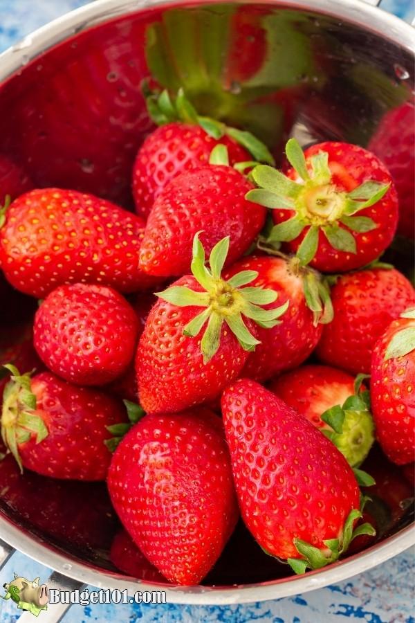fresh strawberries budget101