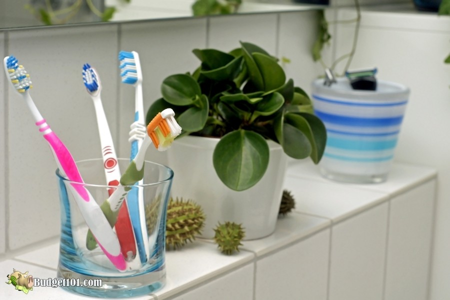 toothbrushes unusual things you can wash in dishwasher