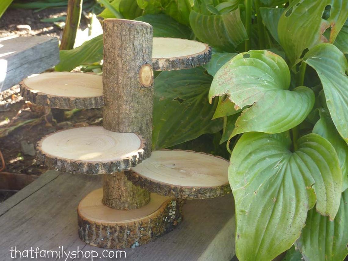 woodslice display 1