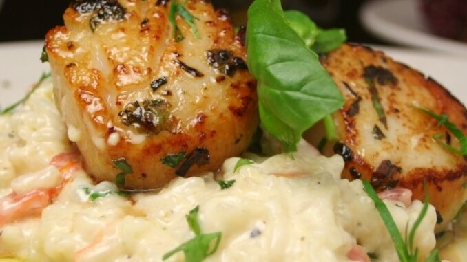 seared scallops cauliflower rice risotto