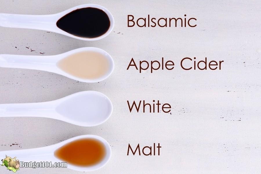 types of vinegar budget101