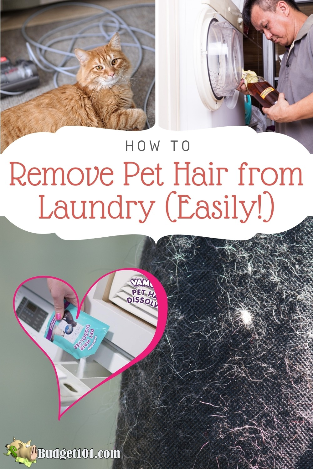 How to Remove Pet Hair From Laundry - complete guide to remove pet hair from laundry, carpeting, and furniture; What works and what doesn't! #Pets #TipsnTricks #Budget10 #DIY #laundry #laundryhacks #DIY