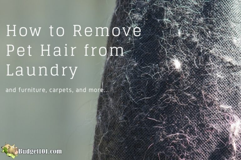 remove pet hair from laundry