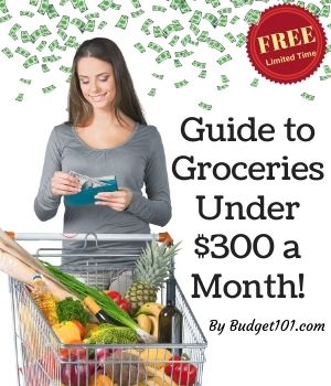 2021 Budget101.com Free Guide to Groceries under $300 a Month