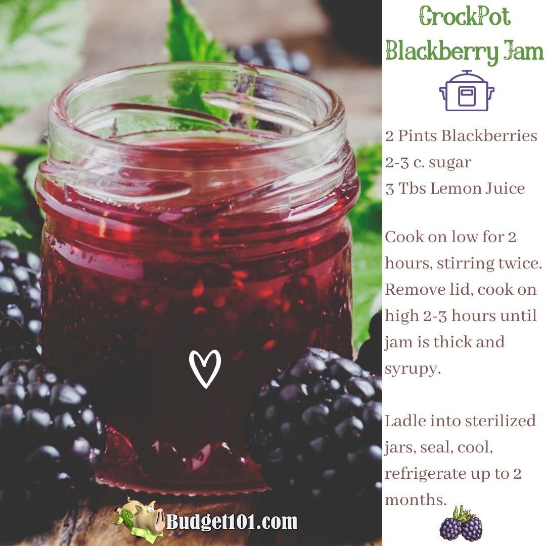 b101 crockpot jam