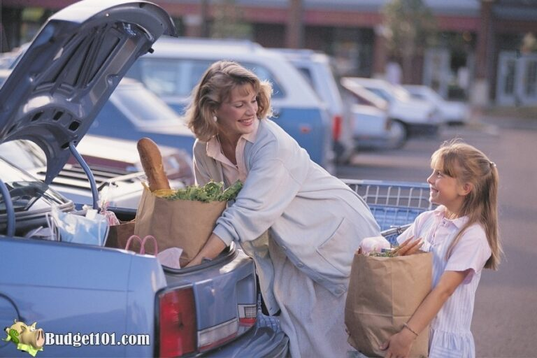 groceries in car budget101
