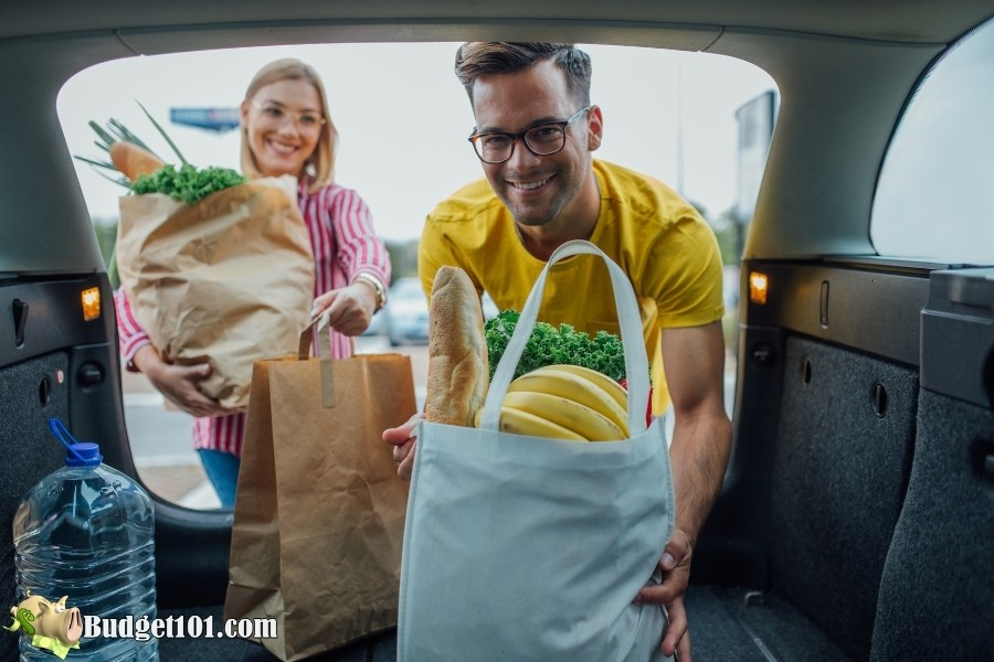 groceries in vehicle budget101