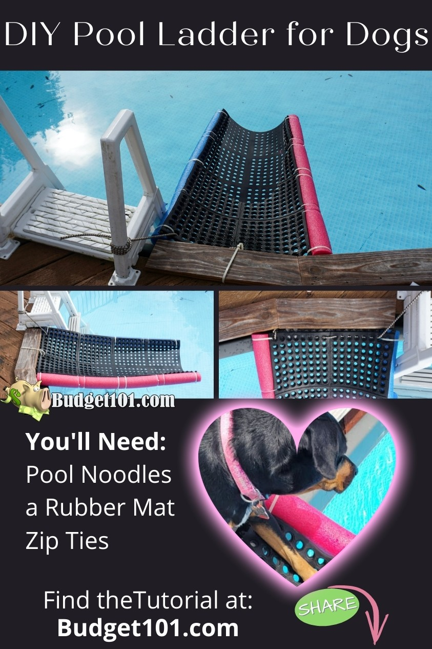homemade pool ladder for dogs for under $30- perfect floating doggy dock ramp you make at home #budget101 #summerfun #doggyramp