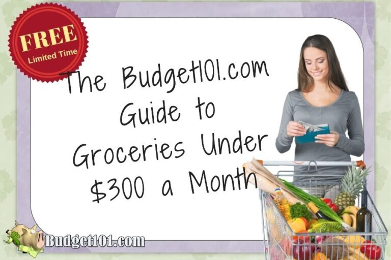 budget101 guide to groceries under 300 month free ebook