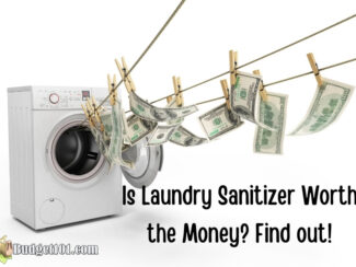 Is Laundry Sanitizer Worth the Money?