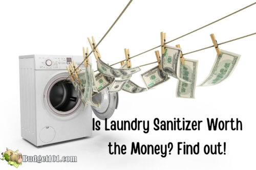 is laundry sanitizer worth the money